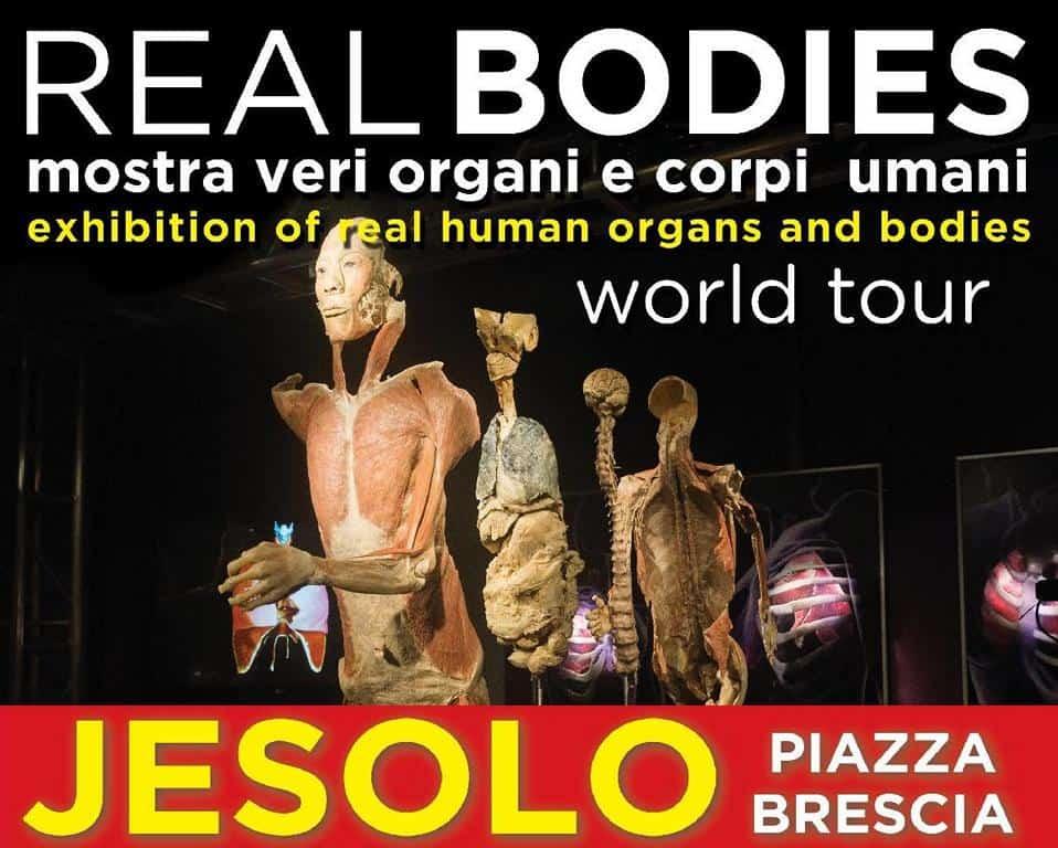 Real Bodies Jesolo